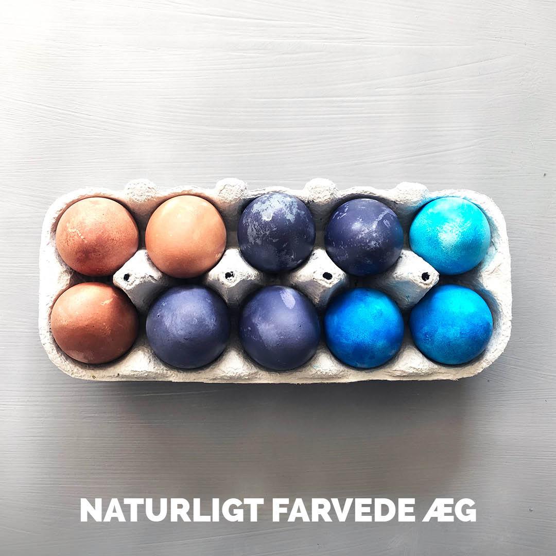 Sådan farver du æg med naturlige farver
